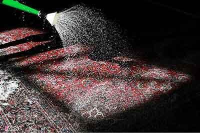 قالیشویی نزدیک شهران